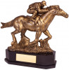 AINTREE DELUXE EQUESTRIAN AWARD (RF19139A)